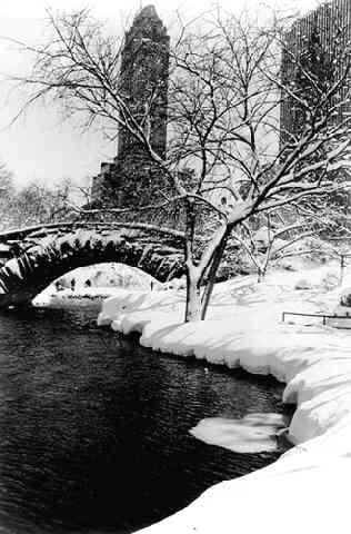 Central Park After A Snowstorm, New York, 1959 Gelatin Silver print