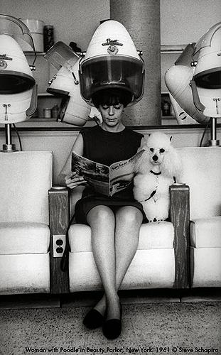 Woman and Poodle at Beauty Parlor, New York, 1961 Gelatin Silver print