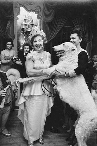 Woman with Wolfhound, White Russian Ball, New York, 1963 Gelatin Silver print