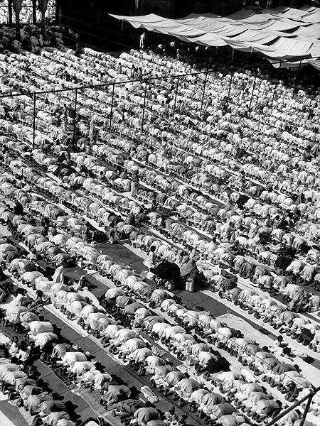 Muslims gather in Delhi at Jami' Masjod, India's largest mosque, 1946 Gelatin Silver print