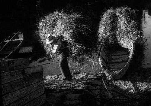 Farmer with Hay, Rhine River, 1947 Archival Pigment Print