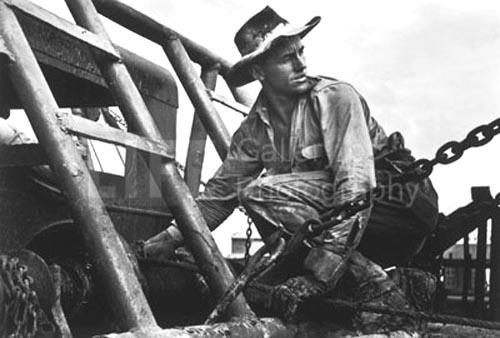Oil field worker, Freer, Texas,1937 Gelatin Silver print